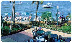 Photo of a Cafe by the Water