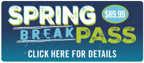 Spring Break Pass - March 9 to 18